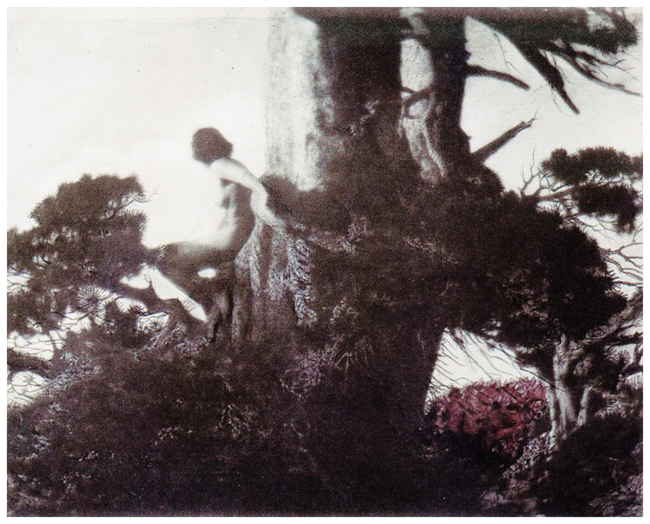 Photograph by Anne Brigman