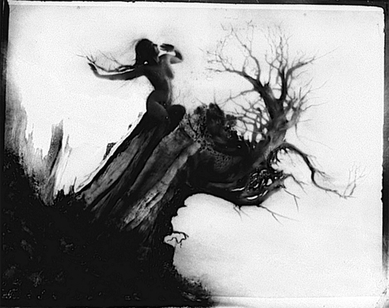 Storm Tree by Anne Brigman, 1915